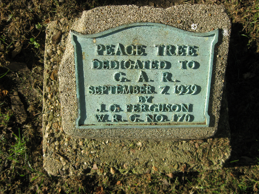 Soldier,  Peace Tree Plaque and Case of Civil War Artifacts